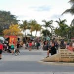 Free events with food trucks  in Broward
